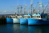 258  FISHING FLEET