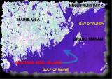 MACHIAS SEAL ISLAND  { MSI }