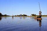 Mokoro Ride in Okavango Delta