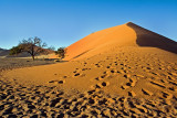Desert Morning (Sunrise on Dune with Footprints)
