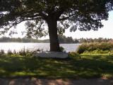 Lake Hornbaek