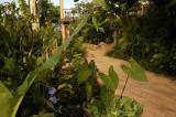 Track at the Phu Chaisai resort