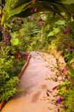 Track at the Phu Chaisai resort II