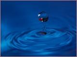 Focasing On Waterdrops