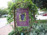 Wine tasting at Gruene.