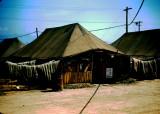John MacDonald tent K-37 Spring 1951