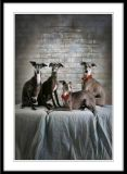 The Very Special Gallery of Very Special Dogs ;-)