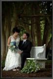 Trisha & Joe's Destination Wedding