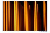 Yellow going orange(abstract)