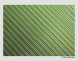 green and white (abstract)