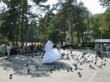 Bride dancing with the pigeons, Zenkov Cathedral