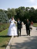 Wedding party, Panfilov Park