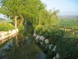 Landscape after Burgos