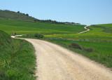 Last climb before Boadilla del Camino