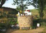 Closer view of the tea garden