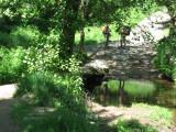Small creek at Raído