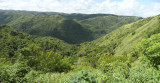 Barranquitas: Virgin territory in the mountains