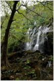 IMGP3197Anse des Cascades.jpg