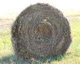 sideways anatomy of a haybale