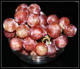 Fruitful !