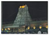 Gopuram-Night shot