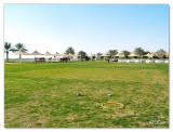 Polo & Equestrian club Dubai.jpg
