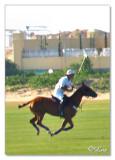 Polo-Play3.jpg