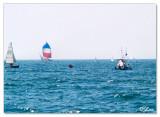 Sail Dubai-Jumairah Sea1.jpg