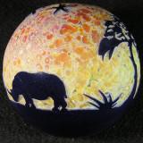 'White Rhino' #9
