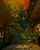 ChristmasEveY.jpg