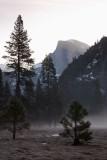 Yosemite 2007-03-08_020.jpg