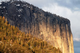 Yosemite 2007-03-07_100.jpg