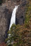Yosemite 2007-03-09_137.jpg