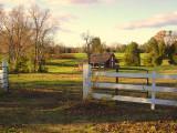 Engel farm