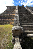 Snake Head on Castle Steps