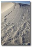 White Sands : Dune Crest at Sunrise