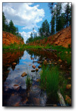 Willow Springs Reflections : Mogollon Rim
