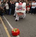3884 - Chinese New Year - Performers - 4b.jpg