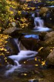 5859-Fall-in-the-Sierra-5.jpg