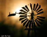 Misty Windmill