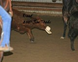 Yelm,  April 21, 2007