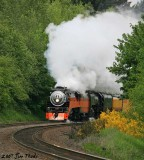 Steam Trains plus