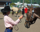 2007 Southwest Washington Fair 4-H Horse Dept. Pictures