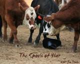 The Soils of War