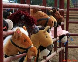 Select a different eager horse from a very special corral and.......