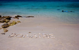 Bonaire - Divers Paradise