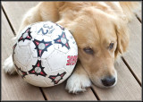 Soccer ANYONE???  PLEEEEEASE????