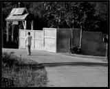 one man walks to the garden, alone
