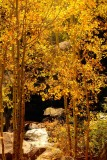 Rocky Mountain National Park (2006-2007)