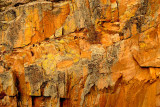 Abstract - Cliff Wall